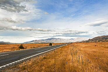 Highway, Omarama, Waitaki District, Canterbury, South Island, New Zealand, Oceania