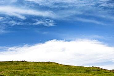 Hiker at Cape Farewell, Golden Bay, South Island, New Zealand, Oceania