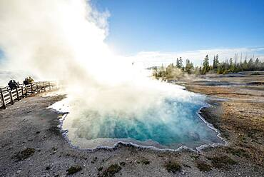 Steaming hot spring with turquoise water in the morning sun, Black Pool, West Thumb Geyser Basin, Yellowstone National Park, Wyoming, USA, North America
