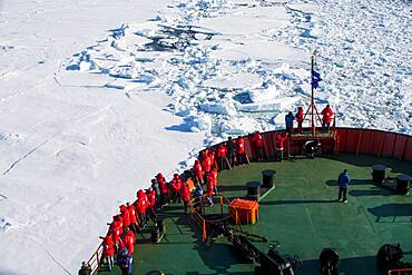 Tourists on a ice breaker watching a Polar bear (Ursus maritimus) in the high arctic near the North Pole
