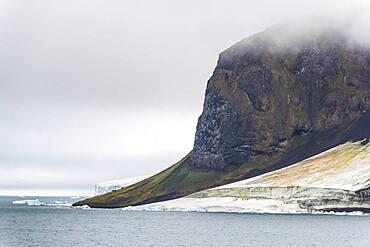 Massive bird cliff, Champ Island, Franz Josef Land archipelago, Russia, Europe
