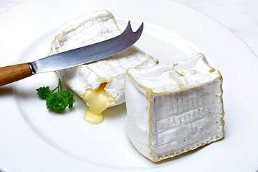 French soft cheese, Pave d'Affinois, with cheese knife