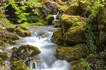 Gorge de Perrefitte, small gorge, brook Chaliere, Perrefitte, Bernese Jura, Bern, Switzerland, Europe