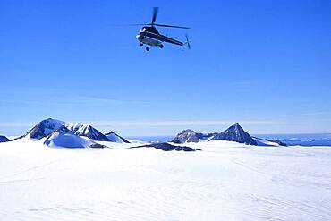 Helicopter flying over Brown Bluff in Antarctic Sound, Weddell Sea, Antarctica