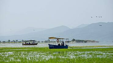 Excursion boats at Lake Kerkini, Macedonia, Greece, Europe