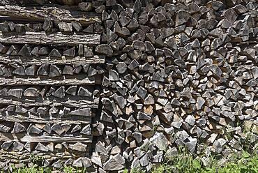 Stacked logs, Bavaria Germany