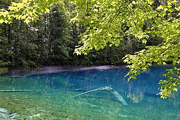 Mountain lake, Christlessee, clouds of mist drift over the clear turquoise water, tree trunks at the bottom of the lake, Trettachtal, Allgaeu Alps, Allgaeu, Bavaria, Germany, Europe