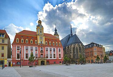 City Hall and St. Mary's Church, Market Square, Weissenfels, Saxony-Anhalt, Germany, Europe