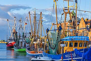 Crab cutter in the fishing harbour, Neuharlingersiel, Lower Saxony, Germany, Europe