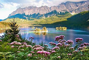 Lake with Zugspitze and islands, Eibsee lake, near Garmisch-Partenkirchen below the Zugspitze in the Wetterstein Mountains in Bavaria, Germany, Europe