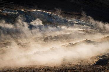 Backlight, Rising Steam, Fumarole, Namafjall, Myvatn or Myvatn, Krafla Volcano System, Northern Iceland, Iceland, Europe
