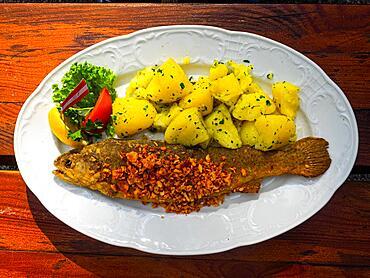 Trout with garlic, Restaurant Fischerhuette at Lake Toplitz, Styria, Austria, Europe