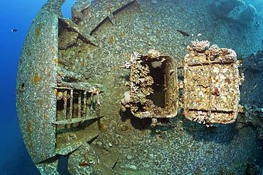 Entrance covered with stony corals (Scleractinia) at the bow of the Cedar Pride, shipwreck, wreck, Red Sea, Aqaba, Jordan, Asia