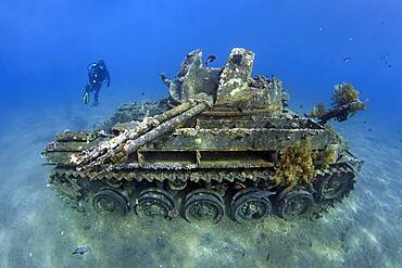 Diver, American tank M42 Duster with self-rotating 40mm anti-aircraft gun, wreck, Red Sea, Aqaba, Kingdom of Jordan