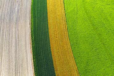 Drone image, agricultural landscape, agricultural fields and meadows near Waldzell, Innviertel, Upper Austria, Austria, Europe