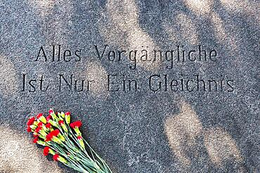 Inscription, quotation from Goethe on stone slab, Everything transient is only a parable, red carnations, grave of Kurt Tucholsky, Mariefred cemetery, Straengnaes, Soedermanlands laen, Sweden, Europe