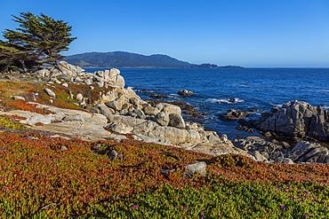 View of Carmel Bay and rocky shoreline at Pebble Beach, 17 Mile Drive, Peninsula, Monterey, California, United States of America, North America