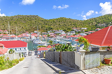 Elevated view of harbour, Gustavia, St. Barthelemy (St. Barts) (St. Barth), West Indies, Caribbean, Central America