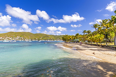 The beach at Port Elizabeth, Admiralty Bay, Bequia, The Grenadines, St. Vincent and the Grenadines, Windward Islands, West Indies, Caribbean, Central America