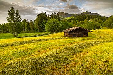 View of traditional log cabin at Schwarzsee near Kitzbuhel, Tyrol, Austria, Europe