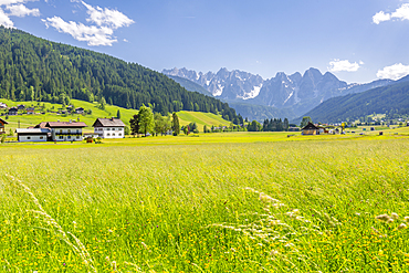 View of countryside from Gosau, Upper Austria region of the Alps, Salzburg, Austria, Europe