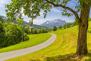 View of country lane and Ellmauer Halt Mountain peak near St. Johann, Austrian Alps, Tyrol, Austria, Europe