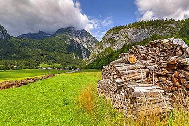 Wood stock piles and mountains, Unterburg, Styria, Tyrol, Austrian Alps, Austria, Europe