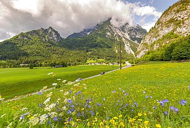 View of road leading into mountains, Unterburg, Styria, Tyrol, Austrian Alps, Austria, Europe