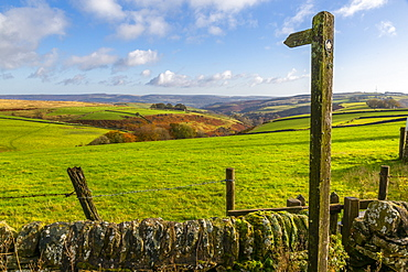 View of autumn colours near Great Hucklow, Derbyshire, Peak District National Park, England, United Kingdom, Europe