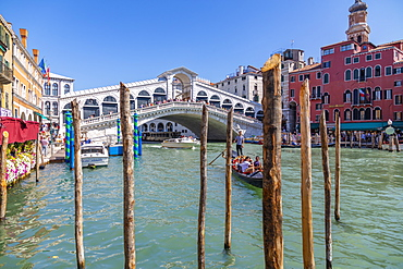 View of Rialto Bridge, Grand Canal and restaurants, Venice, UNESCO World Heritage Site, Veneto, Italy, Europe