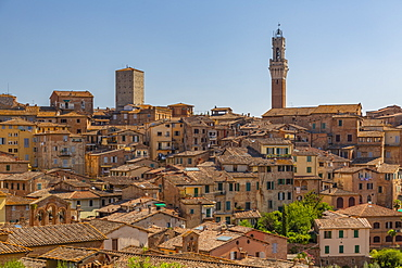 View of city skyline including Campanile of Palazzo Comunale, Siena, Tuscany, Italy, Europe