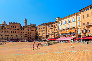 View of Piazza del Campo and Siena Cathedral (Duomo), UNESCO World Heritage Site, Siena, Tuscany, Italy, Europe