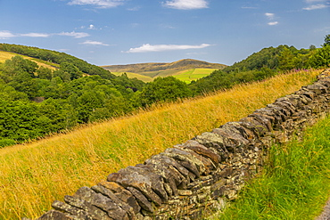 View of dry stone walls, woodland and hills surrounding Hayfield, High Peak, Derbyshire, England, United Kingdom, Europe