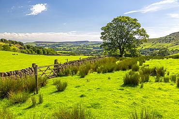 View of countryside near Little Hayfield, High Peak, Derbyshire, England, United Kingdom, Europe