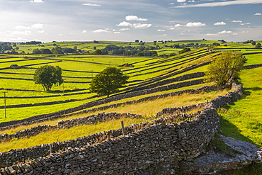 View of dry stone walls near Litton, Peak District National Park, Derbyshire, England, United Kingdom, Europe