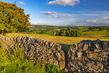 View of dry stone walls near Youlgrave village, Peak District National Park, Derbyshire, England, United Kingdom, Europe