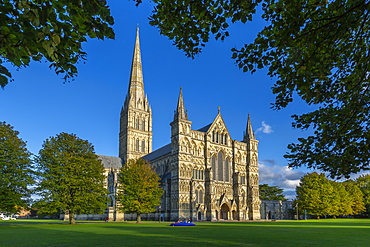 View of Salisbury Cathedral framed by trees, Salisbury, Wiltshire, England, United Kingdom, Europe
