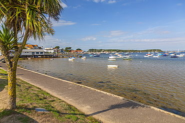 View of Sandbanks and Poole Harbour from Bank Road, Poole, Dorset, England, United Kingdom, Europe