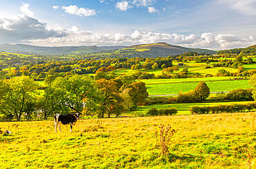 View of Hope Valley and countryside autumnal colours, Derbyshire Peak District, England, United Kingdom, Europe