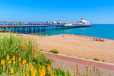 View of flowers, pier and beach in summer time, Eastbourne, East Sussex, England, United Kingdom, Europe