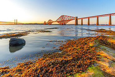 View of the Forth Road Bridge, Queensferry Crossing and Forth Rail Bridge, UNESCO World Heritage Site, over the Firth of Forth at sunset, South Queensferry, Edinburgh, Lothian, Scotland, United Kingdom, Europe