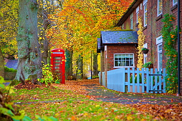 Red telephone box in autumn, Teversal Village, Nottinghamshire, England, United Kingdom, Europe