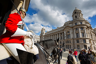 Guard on horseback, Whitehall, Westminster, London, England, United Kingdom, Europe