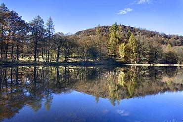 Yew Tree Tarn in autumn, Lake District National Park, Cumbria, England, United Kingdom, Europe