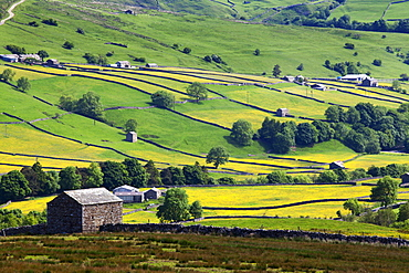 Swaledale in summer from Askrigg High Road near Muker, Yorkshire Dales, Yorkshire, England, United Kingdom, Europe