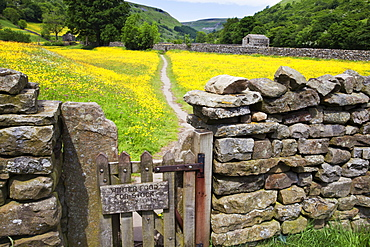 Winter Food for Stock sign on gate in meadow at Muker, Swaledale, Yorkshire Dales, Yorkshire, England, United Kingdom, Europe