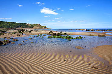 Sand ripples and tide pool at Osgodby Point (Knipe Point) in Cayton Bay, Scarborough, North Yorkshire, Yorkshire, England, United Kingdom, Europe