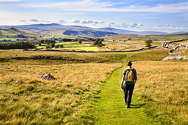 Walker on a Public Footpath approaching Winskill Stones, Yorkshire, England, United Kingdom, Europe