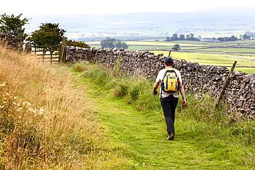 Walker on a Public Footpath in Crummack Dale, Yorkshire, England, United Kingdom, Europe
