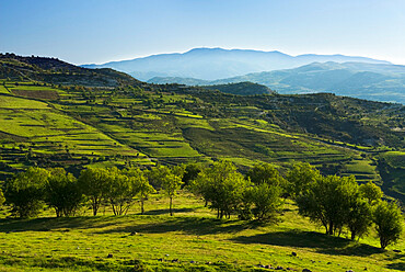 View over High Troodos Mountains to Mount Olympos, Troodos Mountains, Cyprus, Europe
